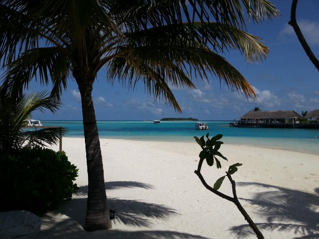 Maldives scene